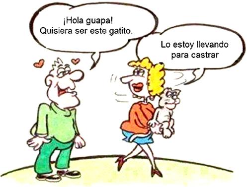 Hola Guapa Toperaes Los Mejores Chistes De Tracción